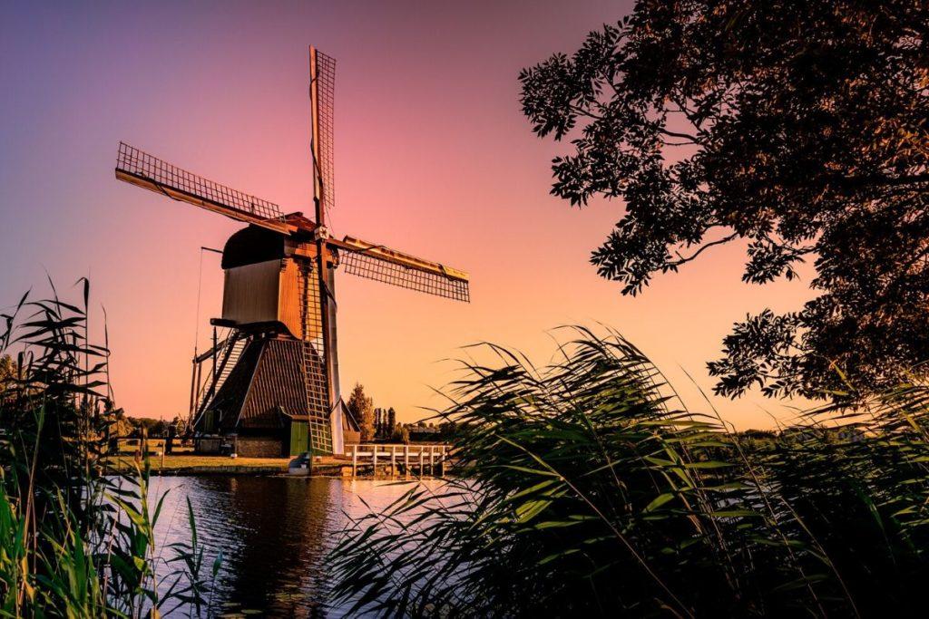 Terug naar Nederland voor de studie: onderhoud de Nederlandse taal