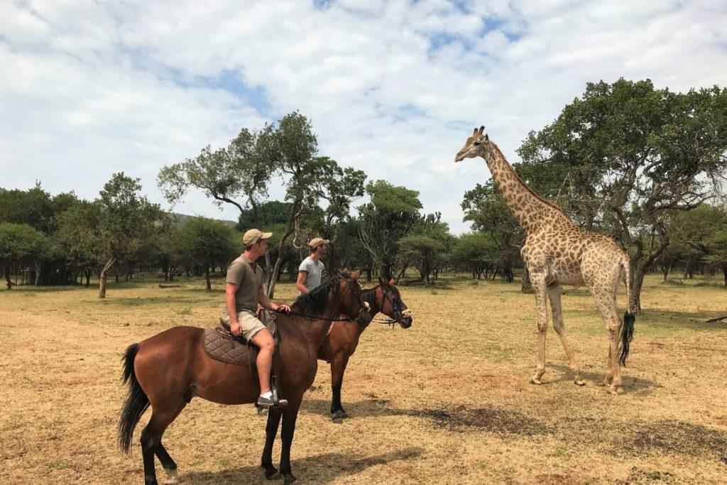 Studieloopbaan Dilo 1 2 Travel Africa